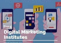 Digital Marketing Training Institutes
